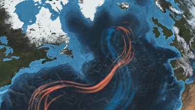 Les courants marins et l'efflorescence algale