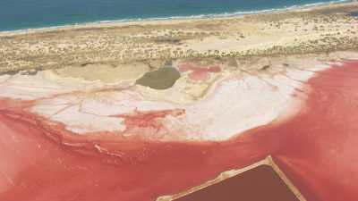 Gros plans de marais salants roses,Pink Lake