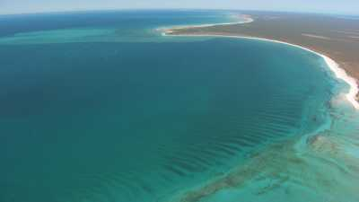 Littoral près de Shark Bay