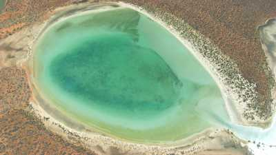 Vue large du littoral coloré de Shark Bay