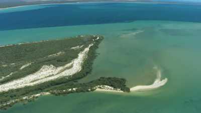 Woramel Seagrass, prairie d'algues de Shark Bay