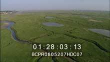 Les agneaux des Pré Salés traversant les eaux de la  Baie de Somme