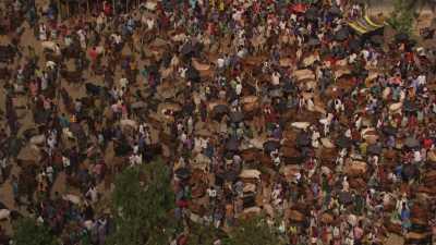 Marché de bestiaux