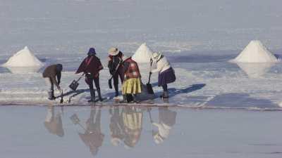 Ramasseurs de sel sur le Salar