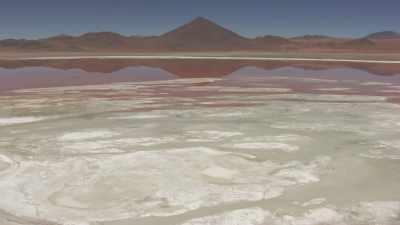Flamants sur la Laguna Colorada