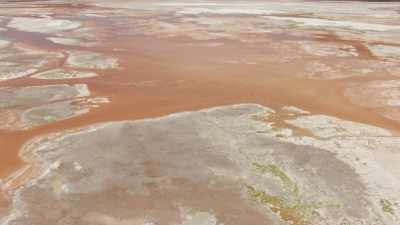 Couleurs vives de la Laguna Colorada