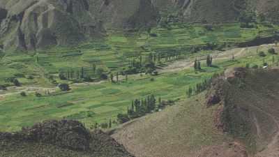 Cultures dans la vallée