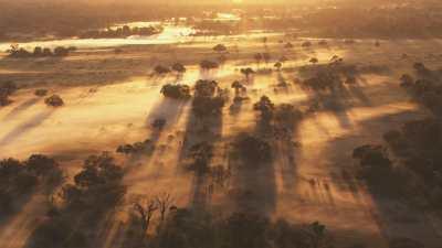Lumière dans la brume du matin