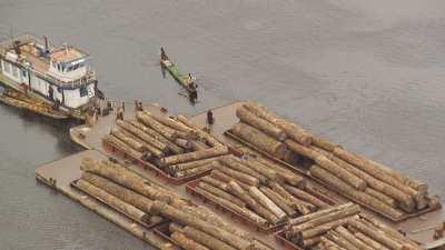 Transport du bois sur une barge surchargée