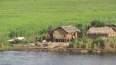 Huttes de bois sur pilotis sur des îles du fleuve Congo