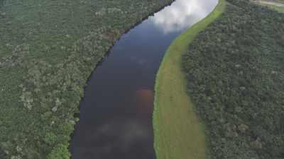 Larges courbes de la rivière Alima dans la forêt