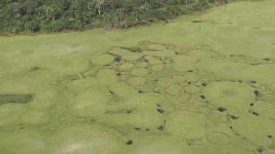 Vastes paysages au fil du fleuve Congo