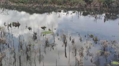 Pirogues sur le lac du barrage d'Imboulou
