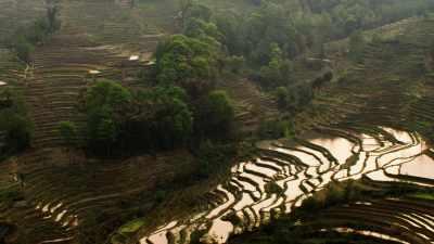 Les rizières en terrasse de Yuanyang