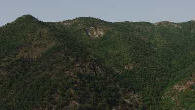Côte, collines verdoyantes et route