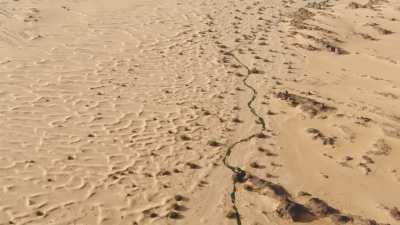 Oasis, falaises, dunes et roches