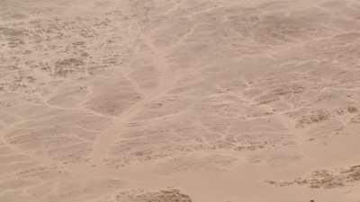 Formes de ramifications dans le sable