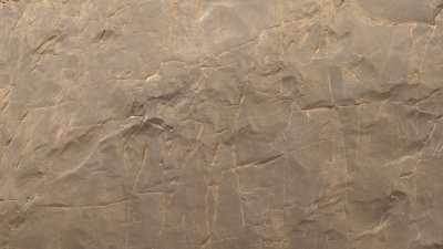 Gravures rupestres du Tassili