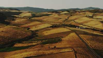 Campagne algérienne près de Guelma