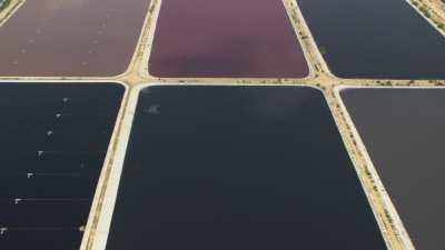 Entrepôts, bassins, campagne près d'Alexandrie