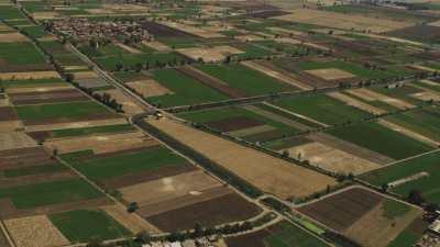 Séparation du blé et serres agricoles