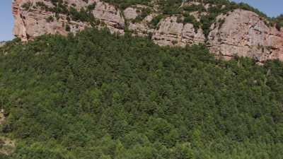Falaises et forêts