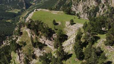 Troupeau de vaches sur la montagne