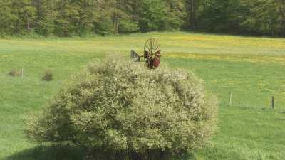 Une roue tourne dans un champ