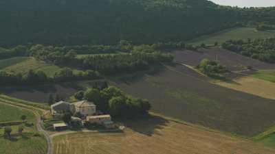Village et propriétés dans les champs de lavande