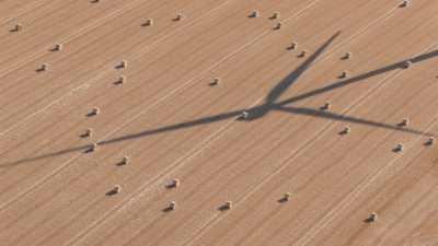 Ombre d'une éolienne sur un champs