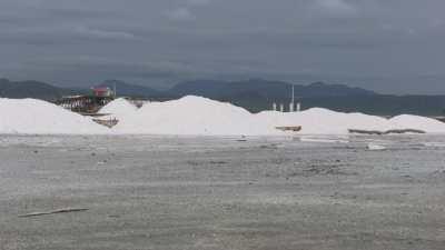 Hommes travaillant le sel sur les berges