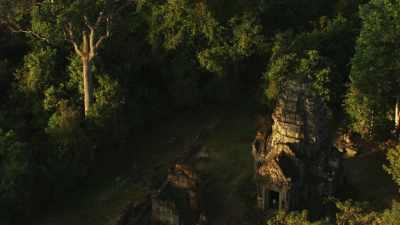 Temples en ruines dans la forêt dense