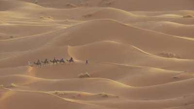 Caravane de touristes dans l'erg Chebbi (Merzouga)