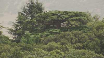 Région d'Ifrane