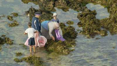 El Jadida, habitants qui pêchent dans les rochers