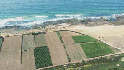 Exploitations agricoles en bord de mer, près de El Jadida