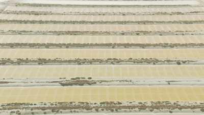 Affluents du fleuve Oum Errabiâ et marais salants, Oualidia