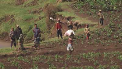 Paysans aux champs à Madagascar