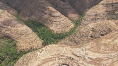 Roches et végétation, Parc National d'Isalo