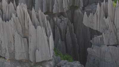Le Parc National des  Tsingy de Bemaraha