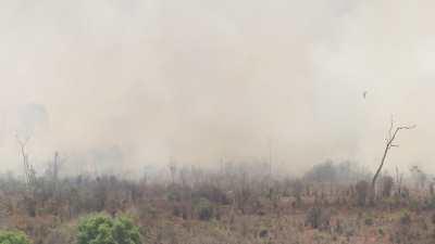 Déforestation par le feu