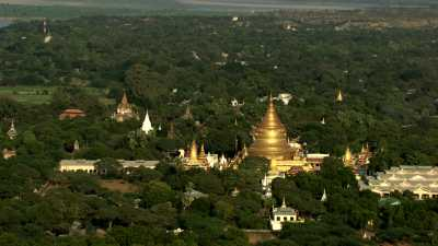 Les dômes dorés des  temples de Bagan dans la forêt