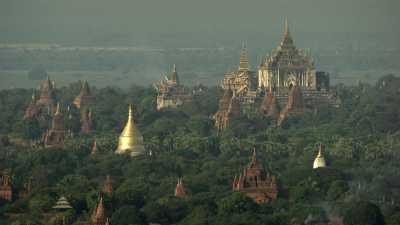Les dômes des temples de Bagan dans la forêt