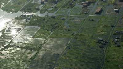 Village dans les champs et marais