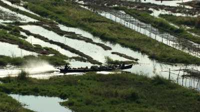 Bateaux dans les champs et marais