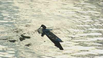 Pêcheur en pirogue en contre-jour