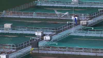 Surveillance des bassins de pisciculture