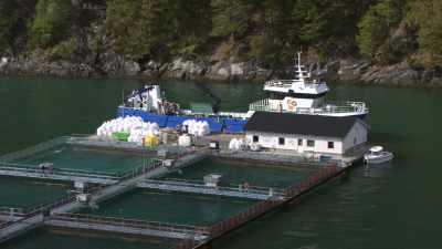Bateau de pêche et bassins de pisciculture