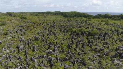 Vues de l'enchevêtrement de pics coraliens laissés par l'exploitation du phosphate