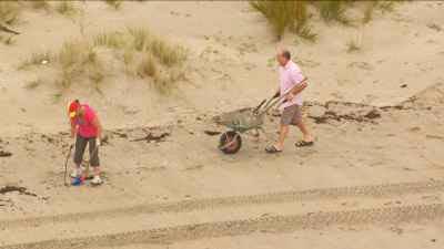 Equipes nettoyant la côte polluée après le naufrage